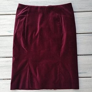 Ann Taylor Petite Lined  A-line Skirt